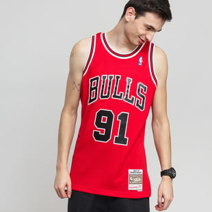 Mitchell & Ness NBA Swingman Jersey Chicago Bulls Dennis Rodman #91