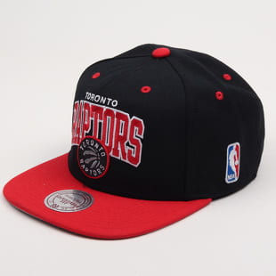 Mitchell & Ness Team Arch Toronto Raptors
