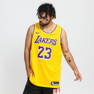 Jordan LeBron James Lakers Icon Edition 2020
